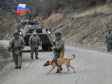 Разминировать Карабах нашим военным помогут собаки и механические саперы