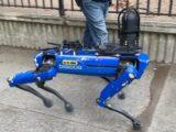 Полиция Нью-Йорка разорвала контракт с Boston Dynamics
